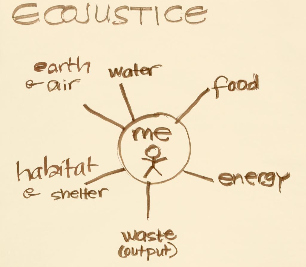EcoJusticeImage