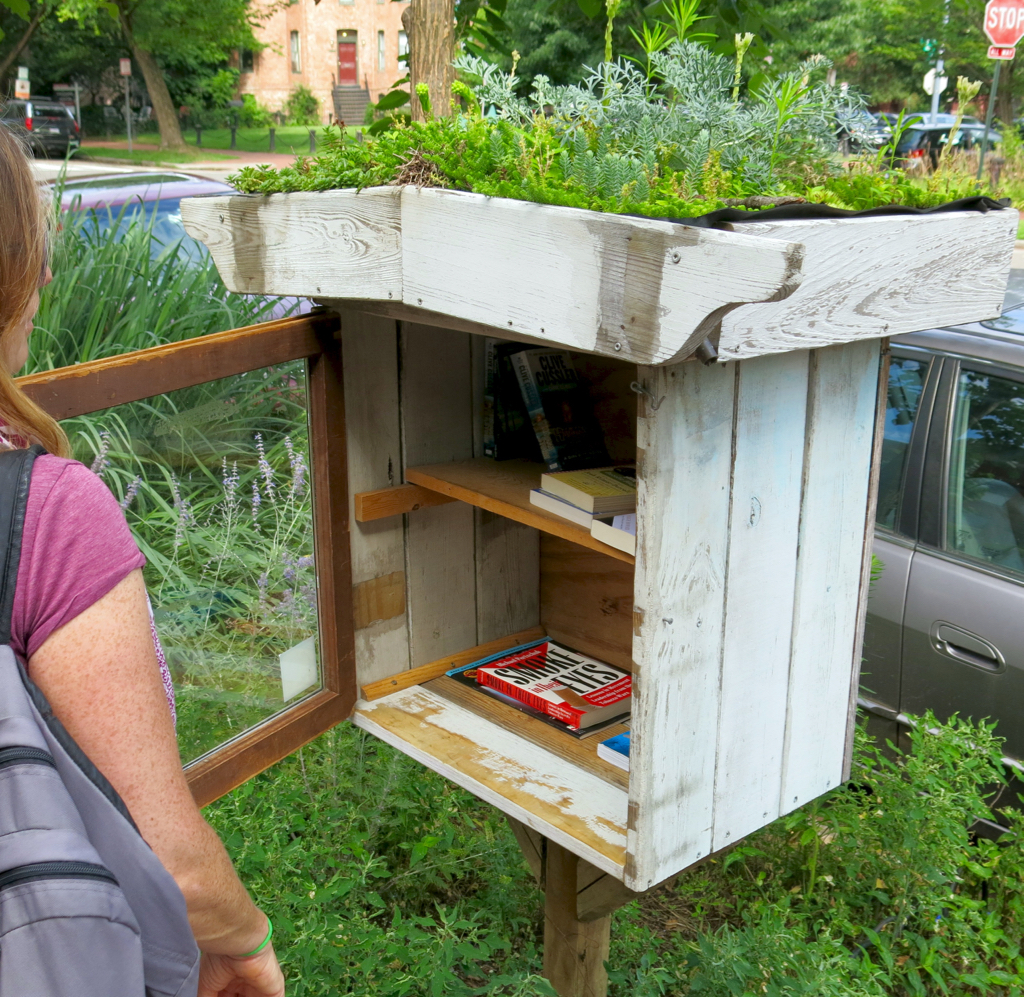 Little Library with green roof